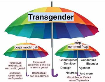 Ombrello transgender e generi